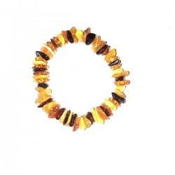 Amber Baltic Adult Natural Jewel Bracelet