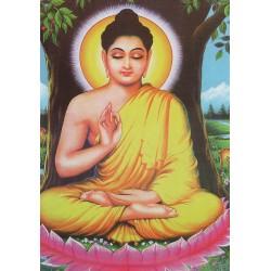 Postcard Buddha Buddha Boudhism