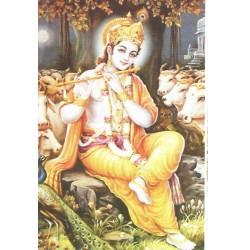 Postcard Krishna Divinity Shepherd India